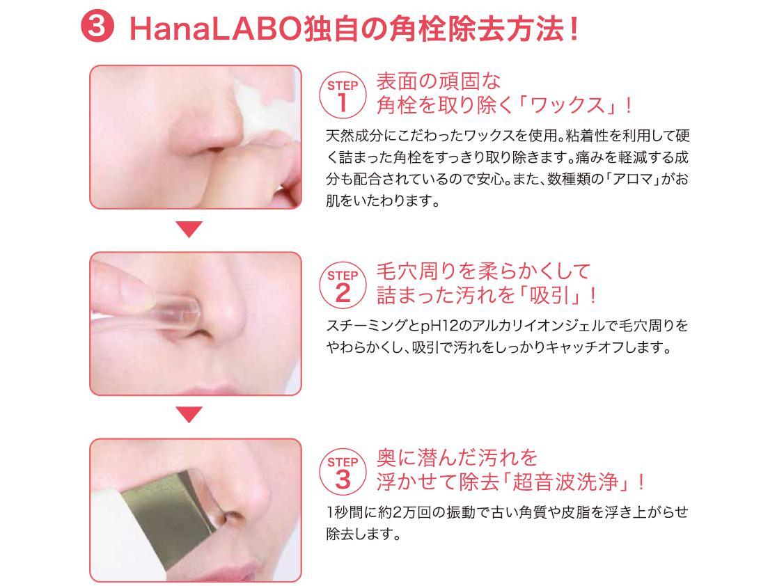 hanalabo06